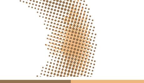 啵啵杏棕花紋